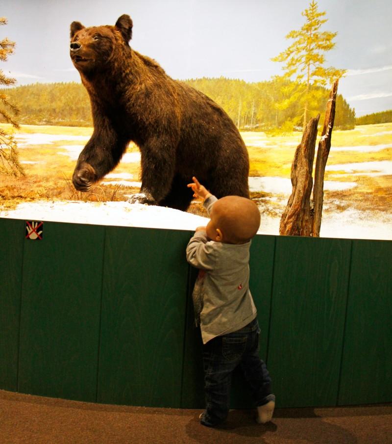 vapriikki+luonnontieteellinenmuseo