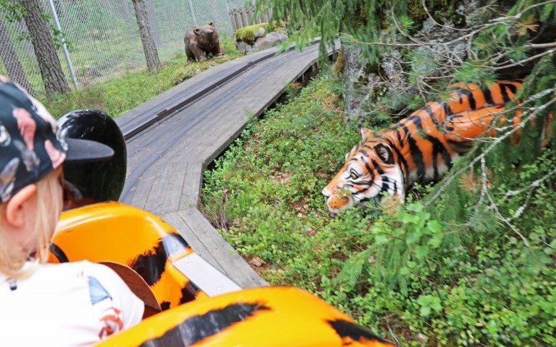 tykkimäki+safari