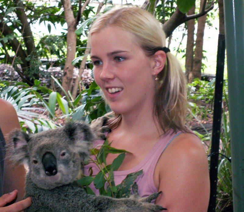 ebookers+koala