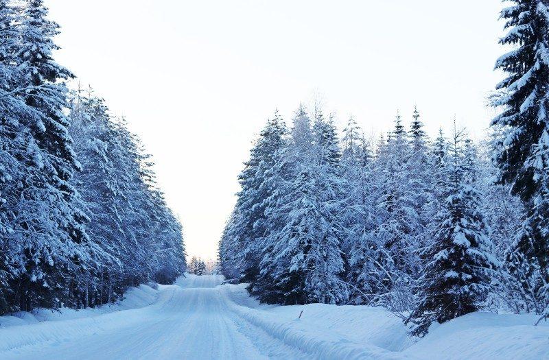 vuokatti+snow