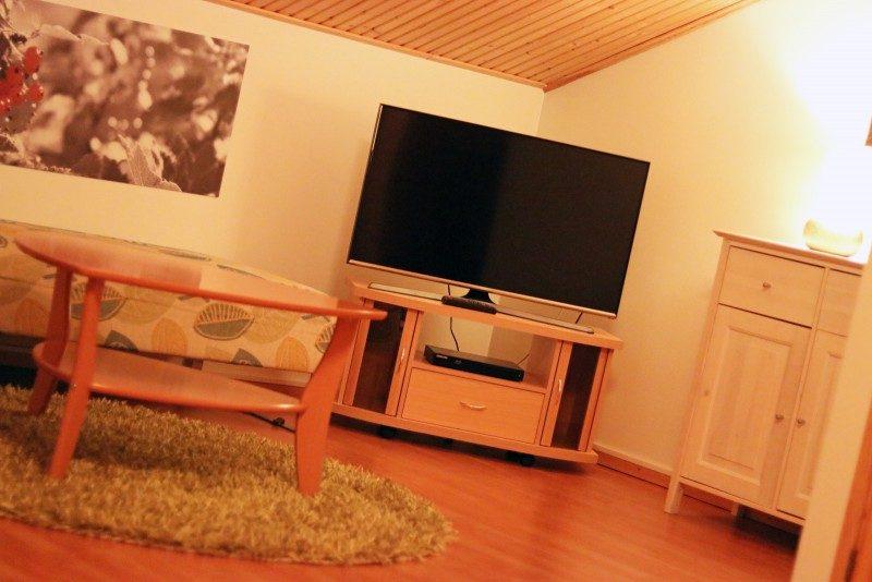 vuokattivika+majoitus+televisio